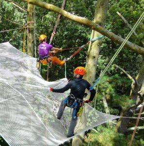 En équipe, installation technique d'un filet arboricole
