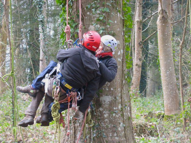 Techniques de sauvetage dans l'arbre